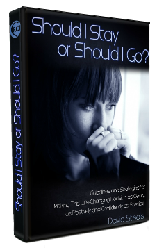 Should I Stay or Should I Go ebook